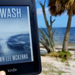 Beach Read: The Forgotten Coast Series by Dawn Lee McKenna